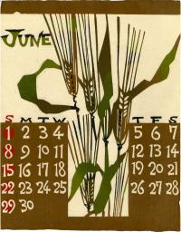 JUNE BRINGS RIPENING GRAIN