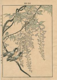 CHINESE WISTERIA, COAL TIT