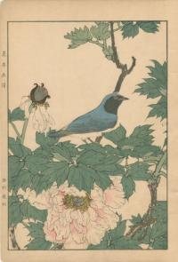 TREE PEONY, BLUE AND WHITE FLYCATCHER