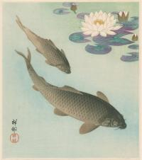 TWO CARP AND LOTUS FLOWERS